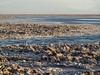 Salar de Atacama / salt lake / San Pedro Chile (roli_b) Tags: san pedro de atacama salar salardeatacama sanpedro sanpedrodeatacama chile south america salt lake salzsee lago see viajar turismo tourism travel