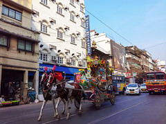 Kolkata ( Calcutta ) (Chiradeep.) Tags: calcutta kolkata city road streetphotography street horse horsecarriage bus vehicle building hotel tramline sunnyday westbengal india asia aroundtheworld travell people mobilephotography androidphotography smartphonephotography huawei honor5c documentary reportage photojournalism vivid colourful