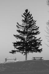 Winnipeg Beach (Keith Levit) Tags: interlake icedriving gimli manitoba mercedesbenzwinterdrivingacademy amg