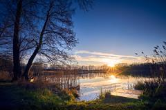 Vor dem Frühling (Andreas Höschel) Tags: genthin mützel jerichowerland sachsenanhalt deutschland germany see winter kalt sonne sun 16mm a7 carlzeiss ufer