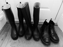 Essential footware (DavidCooperOrton) Tags: 62365 2018 drmartens doctormartens docmartens