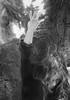 International dance day 2017 (krøllx) Tags: bw nikc blackandwhite ceremony dancemovements dansensdag midtnorge monochrome motions norway tordenskioldsparken trondheim trøndelag vårfruekirke 20170429dsc00035edit