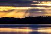 Beams and Birds (Jens Haggren) Tags: sunrise sky clouds sunbeams birds trees forest silhouettes light ice winter landscape nature olympus em1 nacka sweden jenshaggren