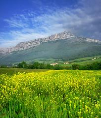 Panorama de Orduña (Jabi Artaraz) Tags: orduña jabiartaraz jartaraz zb euskoflickr primavera flowers flores virgen antigua nature landscape