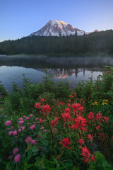 Mirror Mirror (Willie Huang Photo) Tags: mtrainier rainier washington nationalpark mountains flowers wildflowers reflection lake sunrise alpenglow tahoma landscape nature pacificnorthwest scenic
