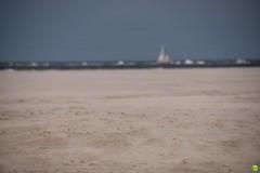 Moving sands (petrOlly) Tags: europe europa germany deutschland borkum island eastfrisia ostfriesland beach northsea nordsee see sea morze nature natura przyroda landscape bokeh