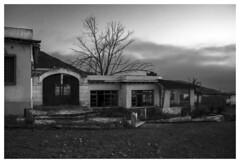Fábrica cementera abandonada _ 001 (carlosmunante) Tags: casa arbol edificio cielo árbol abandonado abandono olvidado