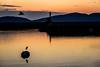 漁港の情景ーScenery of the fishing port (kurumaebi) Tags: yamaguchi 秋穂 nikon d750 山口市 nature landscape 風景 自然 sea 海 sunset 夕焼け 漁港 fishingport