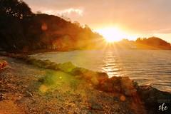 Menai Strait- Bangor Coast (sarita emmanuel) Tags: menaistrait sunset strait coast coastline northwales menai rockyshore eveningbliss eveningsun eveninglight magichour