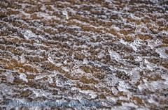 Frozen Texture (livininfrostytown) Tags: snow snowstorm storm weather fun winter utah 2018 charmedimpressions frostytown white texture frozen windblown winterdesign design mothernatdure