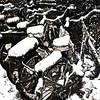 snowy bikes (j.p.yef) Tags: peterfey jpyef yef monochrome bikes bicycles backyard nseasons winter snow city germany hamburg square photomanipulation digitalart