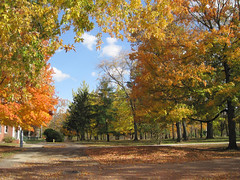 Yellow Springs Ohio (PDX Flyer) Tags: tree autumn gold leaves park leaf sky blue orange yellowsprings ohio vacation beautiful scenic campus college antioch
