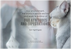 Earl Nightingale Our environment, the world in which we live and work, is a mirror of our attitudes and expectations (symphony of love) Tags: earlnightingale attitude attitudequote badattitude goodattitude positiveattitude quoteonattitude picturequoteonattitude symphonyoflove sol omrekindlingthelightwithin om quotation quote quoteoftheday quotetoliveby quotes qotd inspirationalquote inspirational inspiringquotes inspiration motivationalquotes motivatingquotes motivation dailymotivation dailyinspiration dailyquote potd picturequote picture pictureoftheday pictures expectations