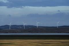 Capital Wind Farm (Geoffsnaps) Tags: capitalwindfarm capital wind farm canberra bungendore newsouthwales suzlonenergy lakegeorge nikond810 nikon d810 fx nikonnikkor300mmf4difedafs nikkor 300mm f4d f4 if ed afs 4 d turbines explored