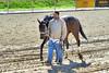 2017-10-30 (24) r2 I Just Wanna Win on way to the barn (JLeeFleenor) Tags: photos photography md maryland marylandhorseracing laurelpark horses thoroughbreds equine equestrian cheval cavalo cavallo cavall caballo pferd paard perd hevonen hest hestur cal kon konj beygir capall ceffyl cuddy yarraman faras alogo soos kuda uma pfeerd koin حصان кон 马 häst άλογο סוס घोड़ा 馬 koń лошадь