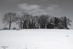Little House On The Prarie (rcss2800) Tags: farm barn blackandwhite monochrome blackwhite tree snow winter