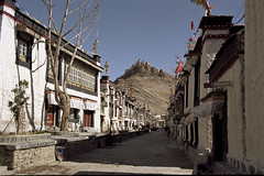 Gyantse Old Town Street - Film (Harald Philipp) Tags: gyantse china tibet film portra iso160 city village street fortress fort cows flags prayerflags communist