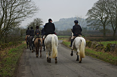 Horses and hounds (Blue Sky Pix) Tags: fourshiresbloodhounds trailhunt derbyshire parwich january 2018 horses hounds riding sport winter peak district national park england pentax