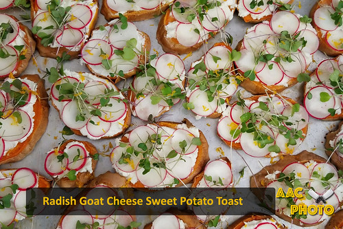 "Radish and Goat Cheese Sweet Potato Toast • <a style=""font-size:0.8em;"" href=""http://www.flickr.com/photos/159796538@N03/39754160504/"" target=""_blank"">View on Flickr</a>"