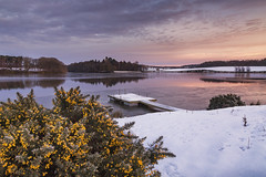 Powder and Ice (mattwalkerncl) Tags: canon eos 6d fullframe benro lee filters sunrise water snow ice lake jetty england uk