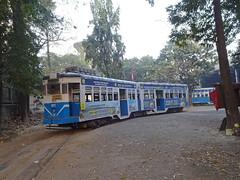 Kolkata 237 Gariahat Depot (Guy Arab UF) Tags: west bengal transport corporation 237 burn standard articulated tram gariahat depot kolkata india calcutta tramways tramway streetcar strassenbahn trams