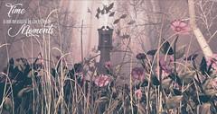 Time (Kayshla Aristocrat) Tags: sl secondlife wholewheat 3d photography kayshlaaristocrat landscaping garden