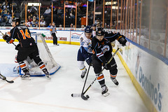 "Kansas City Mavericks vs. Toledo Walleye, January 21, 2018, Silverstein Eye Centers Arena, Independence, Missouri.  Photo: © John Howe / Howe Creative Photography, all rights reserved 2018. • <a style=""font-size:0.8em;"" href=""http://www.flickr.com/photos/134016632@N02/39839875901/"" target=""_blank"">View on Flickr</a>"