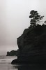 Devil's Punchbowl 7, 2017 (Sara J. Lynch) Tags: sara j lynch asahi pentax k1000 35mm film black white oregon coast beach ocean west devil's punchbowl state park cliffs headlands geology trees tree