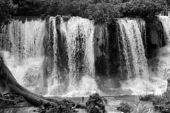 Waterfall Series (last one) (elhawk) Tags: yatochkusam waterfall lacandonforest chiapas mexico bw