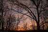 Sunrise Through the Office WIndow_16614 (smack53) Tags: smack53 winter wintertime winterseason trees silhouettes sunrise earlymorning morning morningsky westmilford newjersey canon powershot g12 canonpowershotg12