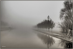 UN GIRO NELLA NEBBIA :-)) (Roberto.mac.) Tags: nebbia canalemuzza lombardia bw fantasiadelbw biancoenero natura paesaggi landcsapes