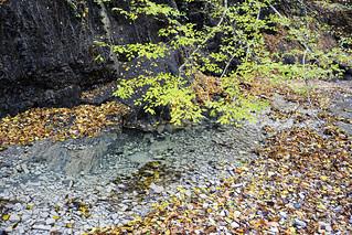 Dzhubga River