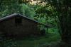 Asturias, Picos de Europa (efe Marimon) Tags: canoneos70d felixmarimon asturias cantábrico picosdeeuropa lagosdecovadonga vacas