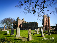 Lindisfarne Priory (Jean D. Photography) Tags: northumberland priory church ruined ruin grave graveyard tree sn blue skye isle island lindisfarne holy causeway history cuthbert stone sony bede abandoned