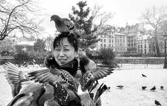Feather coat (manteau plume) (jcPec) Tags: pigeons paris winter coat street asian snow birds squre