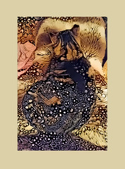 Kami (GeminEye27) Tags: pixelbenderoilpaint kami cat abstract pattern dreamscope topazclean
