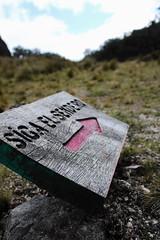 """Follow the path"" (benjamin.t.kemp) Tags: path sign trail trek detail travel nature park"