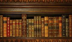 Literary Treasures (Jon Scherff) Tags: literature books oldbooks antiquebooks bookshelf leatherboundbooks nikond810 earthcolors