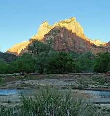 Zion Gold, UT 2014 (inkknife_2000 (9.5 million views)) Tags: zionnationalpark usa landscapes nationalparks redrockformations nature hiking utah utahnationalparks dgrahamphoto virginriver sunrise firstlight