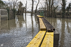Les planches HDR+DxOFP XT2 DSCF0982 (mich53 - thank you for your comments and 4M view) Tags: xt2 riverside overflow inondation xf1655mmf28rlmwr france seine fleuve planches boat îledefrance yvelines 2018 crue water