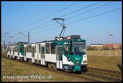 161-2018-02-23-1-Bornstedter Feld (steffenhege) Tags: potsdam vip tram tramway strasenbahn streetcar ckd kt4d kt4dm kt4dc 161