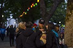 Folk Fest Crowd 1