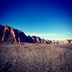 Gorgeous day for a hike on #303day (crazyred04) Tags: 303day colorado hike hiking getoutside getoutdoors outdoors denver roxborough state statepark park sandstone redrocks trail nature photographer playoutside sunny 303 frontrange canyon trees rocks fence valley