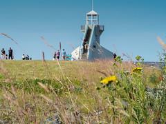 Lighthouse (Marko@Oulu) Tags: kukka voikukka nallikari lighthouse majakka oulu finland suomi kesä päivä summer people roaming meri ocean beach uimaranta sky taivas
