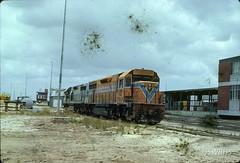 8001J-02 (Geelong & South Western Rail Heritage Society) Tags: aus australia forrestfield lclass westernaustralia