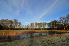 January morning, with my new wide angle lens
