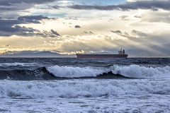 Shin-Rei (Paul Rioux) Tags: bc victoria juandefucastrait salishsea ship vessel freighter bulkcarrier morning ocean sea marine clouds outdoor wind waves storm surf breakers beach driftwood logs mountains prioux shinrei