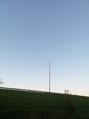 09-24-17 Dayton 02 hawk (Chicagoan in Ohio) Tags: dayton morningglories spiderwebs