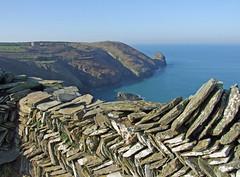 Clifftop herringbone 'Cornish hedge' (Philip_Goddard) Tags: cornishhedge drystonewall northcoast southwestcoastpath southwestway coastpath coast landscapes views scenery firebeaconhill boscastle cornwall con europe britain british britishisles greatbritain uk unitedkingdom