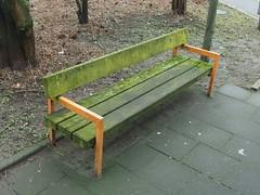 Mit dem Moos zur Bank (mkorsakov) Tags: waltrop city innenstadt bank bench moos moss grün green orange